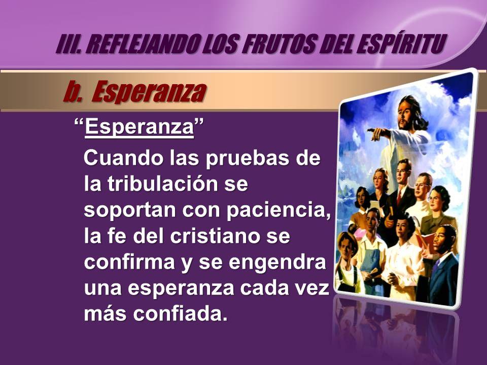 EsperanzaEsperanza Cuando las pruebas de la tribulación se soportan con paciencia, la fe del cristiano se confirma y se engendra una esperanza cada ve
