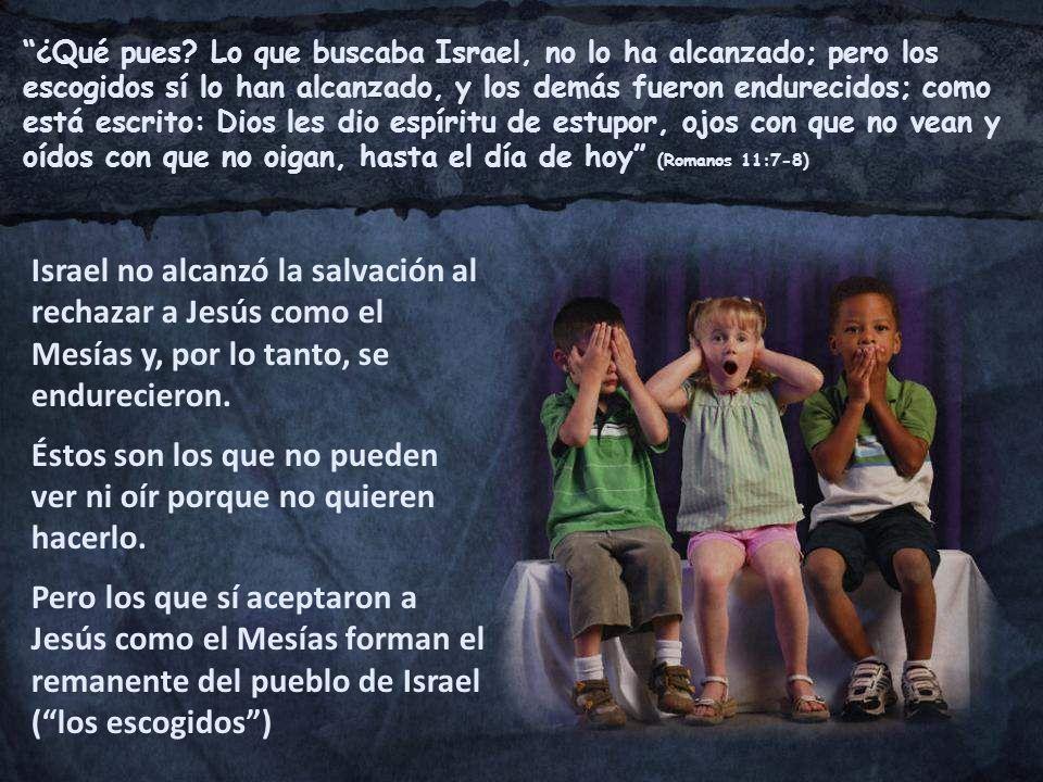 ¿Qué pues? Lo que buscaba Israel, no lo ha alcanzado; pero los escogidos sí lo han alcanzado, y los demás fueron endurecidos; como está escrito: Dios