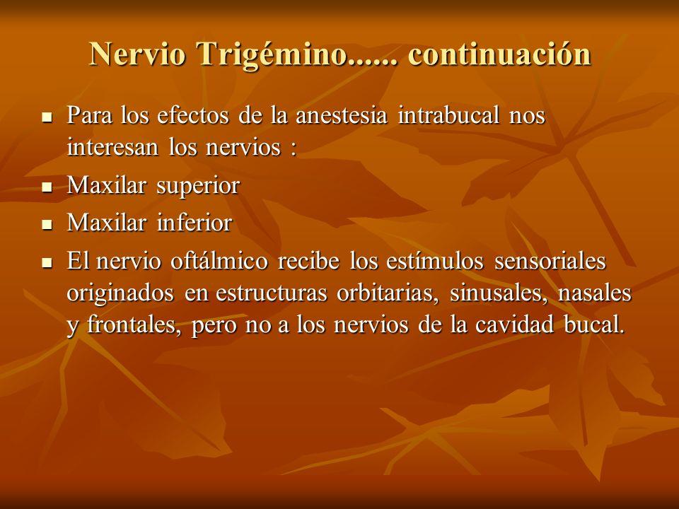 Nervio Trigémino...... continuación Para los efectos de la anestesia intrabucal nos interesan los nervios : Para los efectos de la anestesia intrabuca