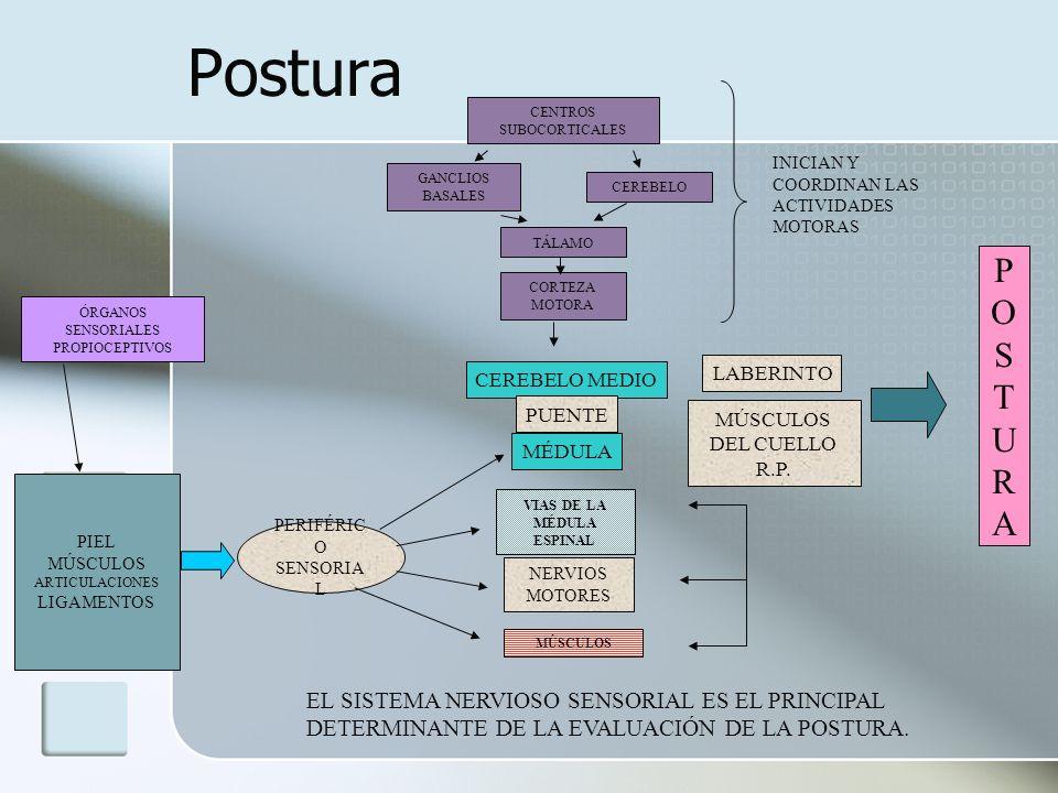 FIBROMIALGIA Cuales son los síntomas clásicos de esta patología .