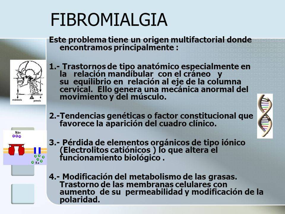 FIBROMIALGIA Este problema tiene un origen multifactorial donde encontramos principalmente : 1.- Trastornos de tipo anatómico especialmente en la rela