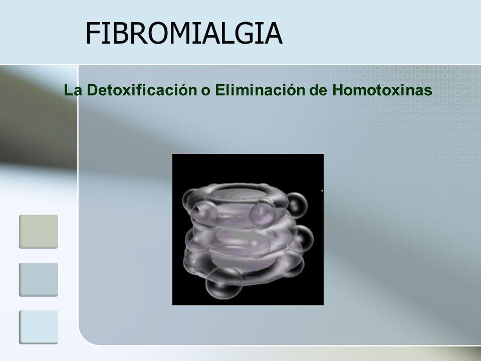 FIBROMIALGIA La Detoxificación o Eliminación de Homotoxinas