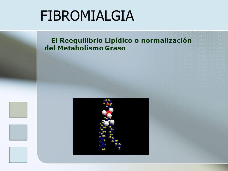FIBROMIALGIA El Reequilibrio Lipídico o normalización del Metabolismo Graso