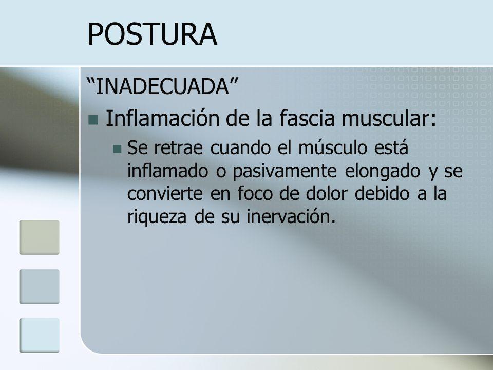 POSTURA INADECUADA Inflamación de la fascia muscular: Se retrae cuando el músculo está inflamado o pasivamente elongado y se convierte en foco de dolo