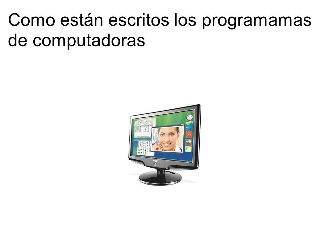Como están escritos los programamas de computadoras