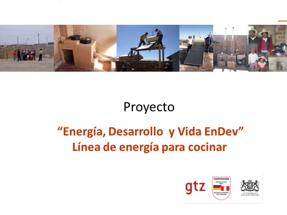 Proyecto Energía, Desarrollo y Vida EnDev Línea de energía para cocinar