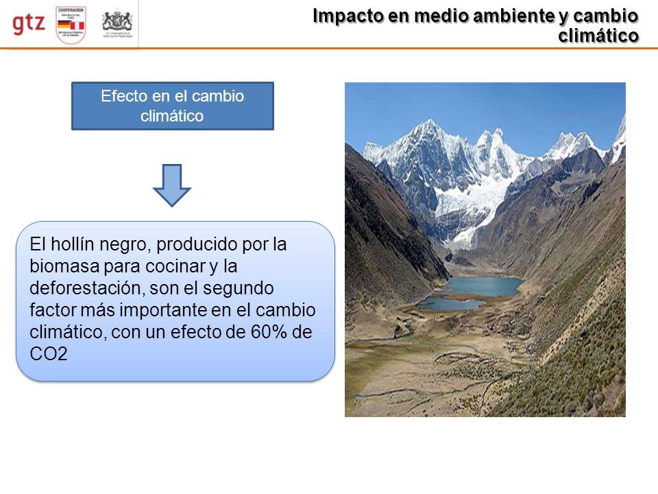 Impacto en medio ambiente y cambio climático Efecto en el cambio climático El hollín negro, producido por la biomasa para cocinar y la deforestación,