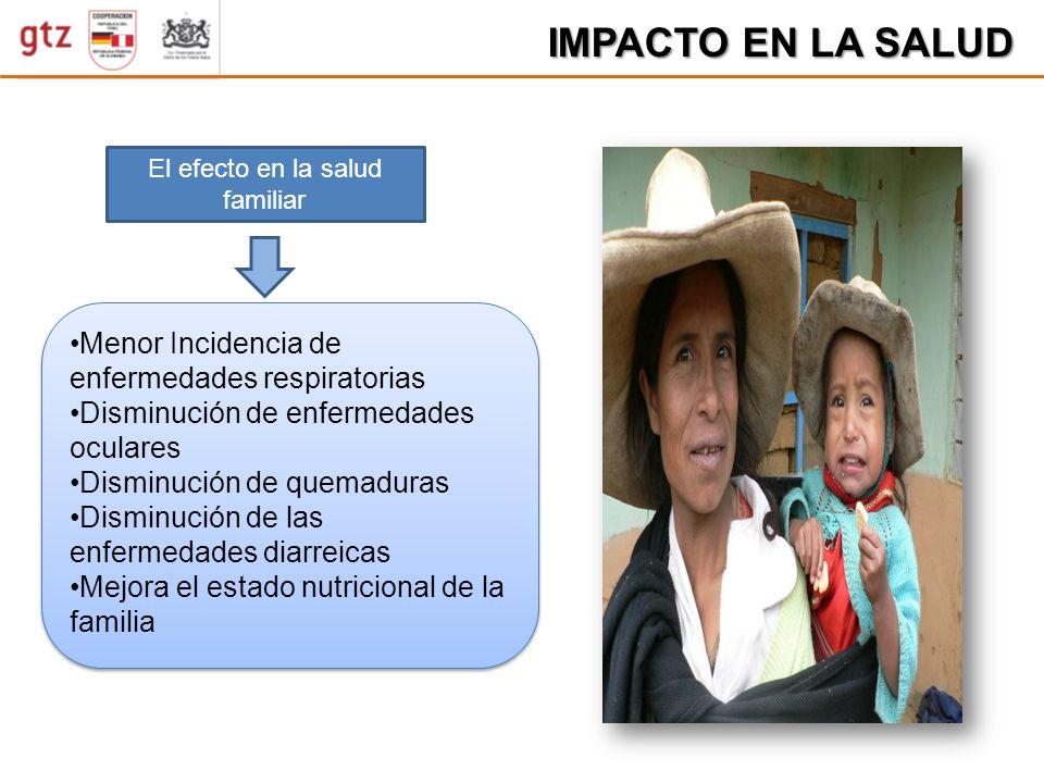 D ISMINUCION PARASITOSIS IMPACTO EN LA SALUD El efecto en la salud familiar Menor Incidencia de enfermedades respiratorias Disminución de enfermedades