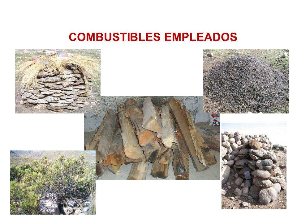 Problemática en salud Problemática en la salud Los niveles de exposición a las substancias tóxicas en la combustión de biomasa supera 10 a 20 veces mas las recomendadas por la OMS.