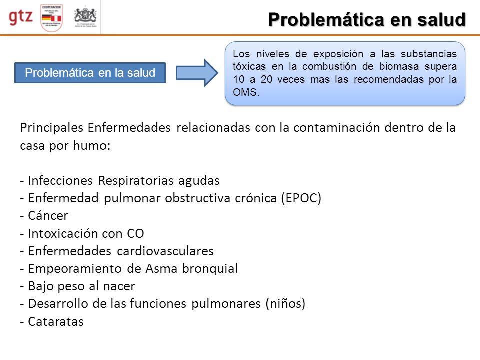 Problemática en salud Problemática en la salud Los niveles de exposición a las substancias tóxicas en la combustión de biomasa supera 10 a 20 veces ma