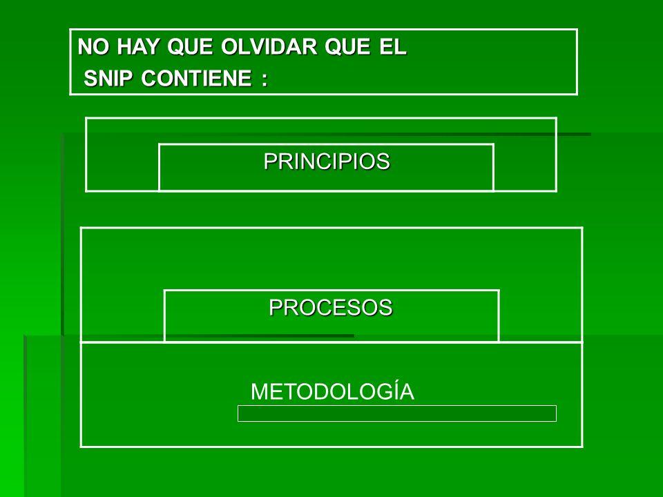 PROCESOS PROCESOS PRINCIPIOS PRINCIPIOS NO HAY QUE OLVIDAR QUE EL SNIP CONTIENE : SNIP CONTIENE : METODOLOGÍA