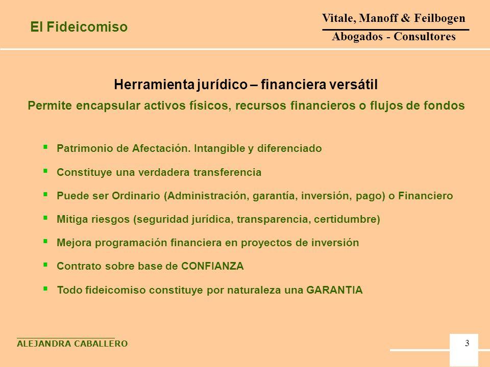 4 Herramienta jurídico – financiera versátil Permite encapsular activos físicos, recursos financieros o flujos de fondos Patrimonio de Afectación. Int
