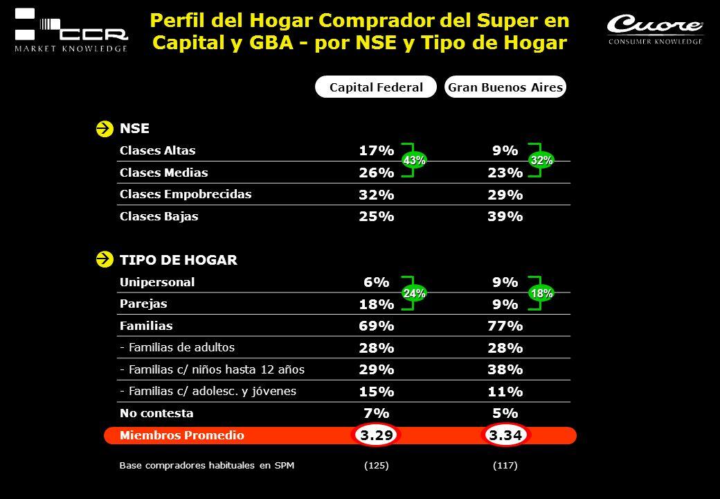 Capital FederalGran Buenos Aires NSE Clases Altas 17%9% Clases Medias 26%23% Clases Empobrecidas 32%29% Clases Bajas 25%39% TIPO DE HOGAR Unipersonal