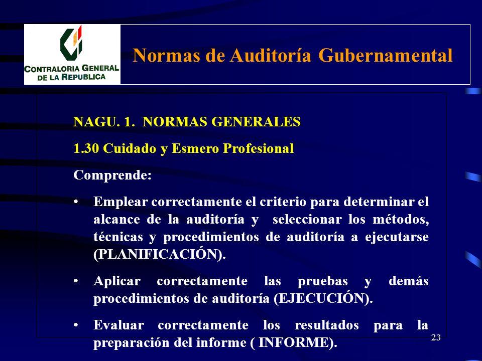 22 NAGU. 1. NORMAS GENERALES 1.30 Cuidado y Esmero Profesional El Auditor debe actuar con el debido cuidado profesional a efectos de cumplir con las n
