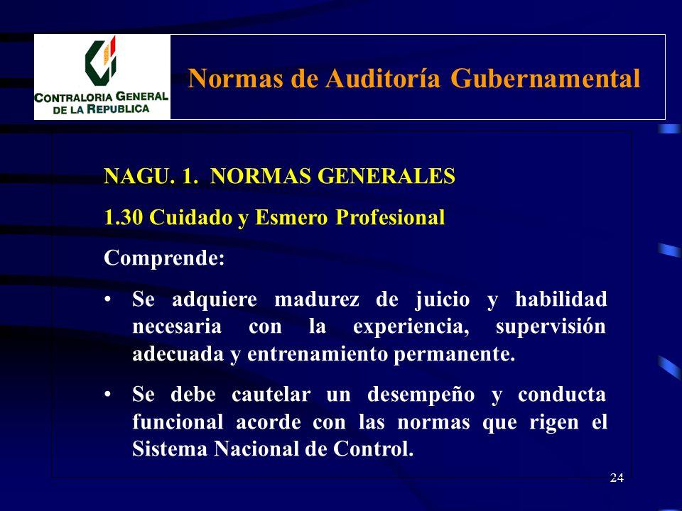 23 NAGU. 1. NORMAS GENERALES 1.30 Cuidado y Esmero Profesional Comprende: Emplear correctamente el criterio para determinar el alcance de la auditoría