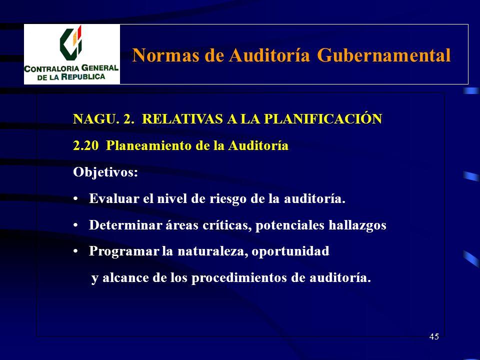 44 NAGU. 2. RELATIVAS A LA PLANIFICACIÓN 2.20 Planeamiento de la auditoría Definición: Desarrollar una estrategia general para la conducción de la aud