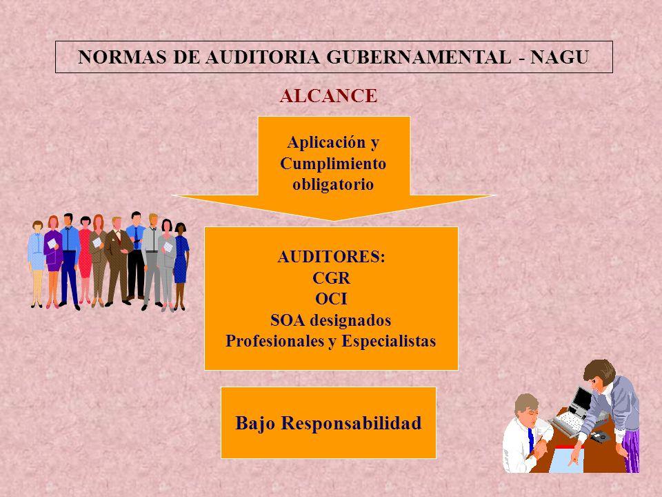 5 Normas de Auditoría Gubernamental INTRODUCCIÓN APLICACIÓN DE LAS NAGAs Totalmente en el caso de: Auditorías Financieras En lo aplicable en los casos