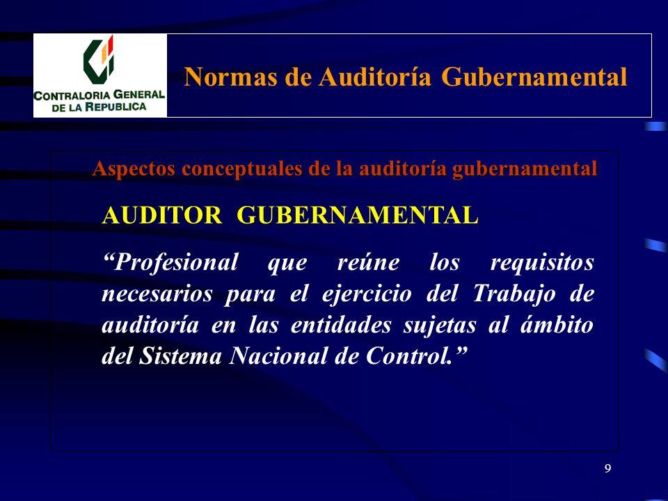 8 Normas de Auditoría Gubernamental INTRODUCCIÓN ESTRUCTURA a)CÓDIGO.- numerales de referencia (grupo y orden). b)TÍTULO.- denominación de la norma. c