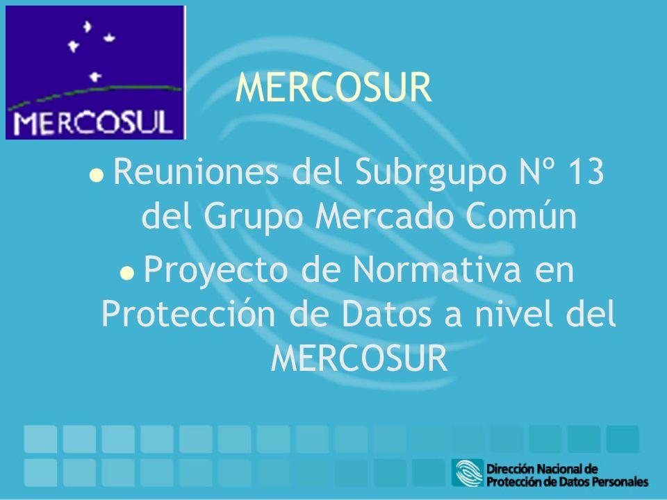 MERCOSUR l Reuniones del Subrgupo Nº 13 del Grupo Mercado Común l Proyecto de Normativa en Protección de Datos a nivel del MERCOSUR