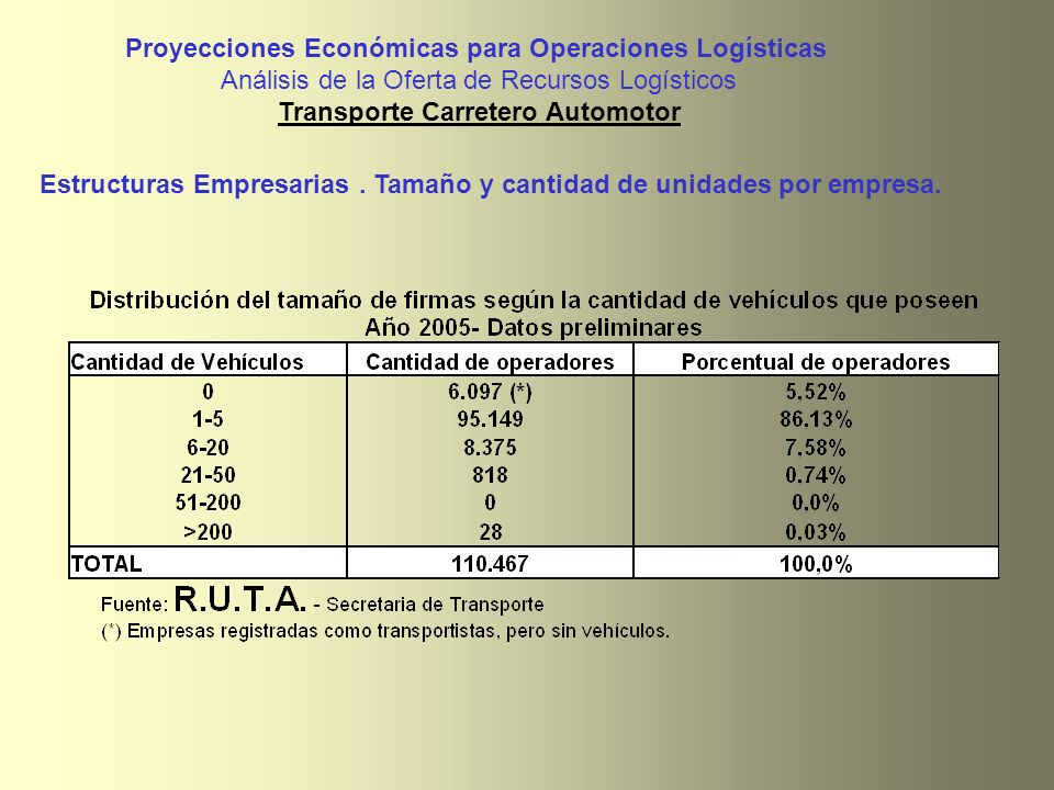 Proyecciones Económicas para Operaciones Logísticas Análisis de la Oferta de Recursos Logísticos Transporte Carretero Automotor Estructuras Empresaria