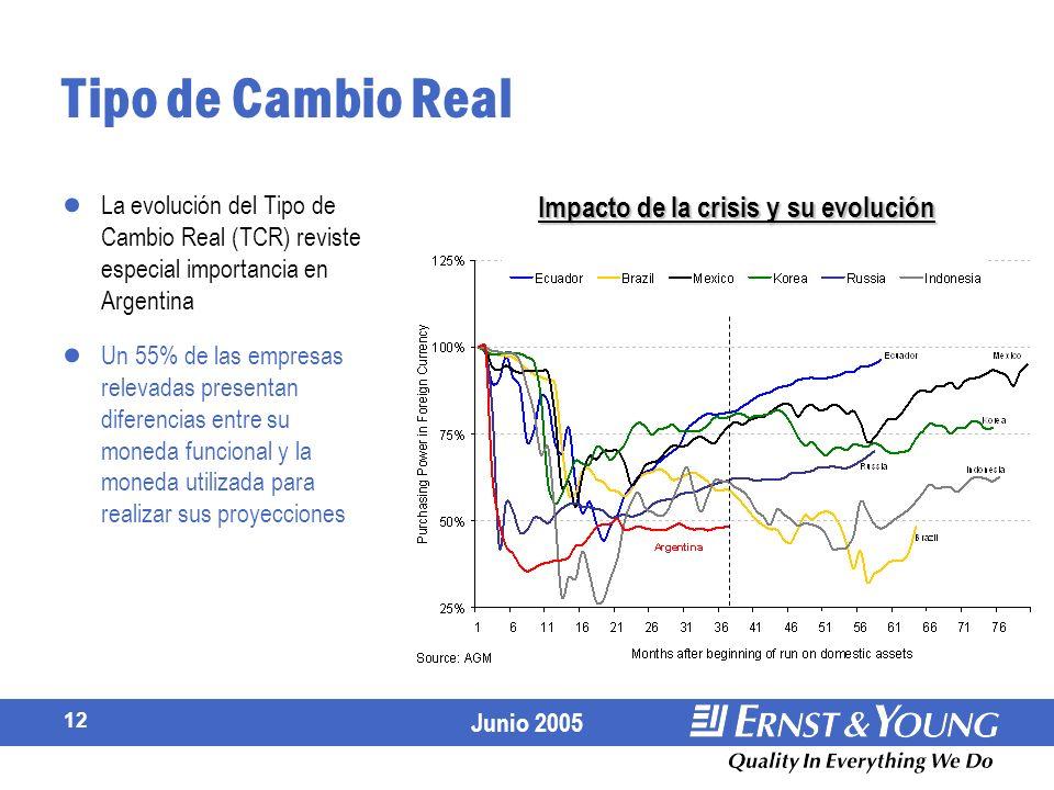 Junio 2005 12 Tipo de Cambio Real La evolución del Tipo de Cambio Real (TCR) reviste especial importancia en Argentina Un 55% de las empresas relevadas presentan diferencias entre su moneda funcional y la moneda utilizada para realizar sus proyecciones Impacto de la crisis y su evolución