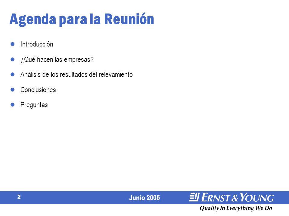 2 Agenda para la Reunión Introducción ¿Qué hacen las empresas.