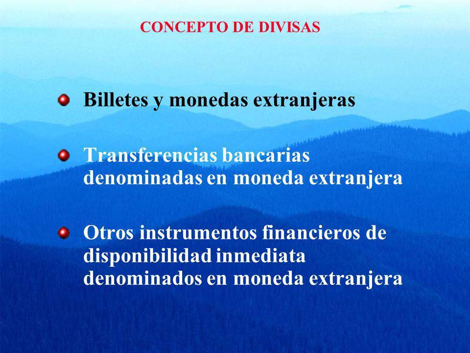 CONCEPTO DE DIVISAS Billetes y monedas extranjeras Transferencias bancarias denominadas en moneda extranjera Otros instrumentos financieros de disponi