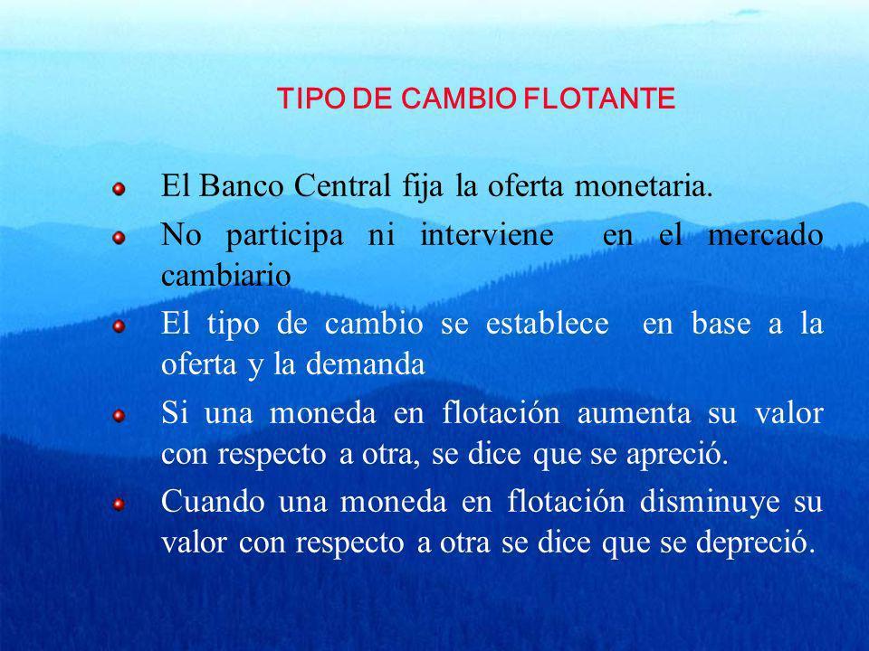 TIPO DE CAMBIO FLOTANTE El Banco Central fija la oferta monetaria. No participa ni interviene en el mercado cambiario El tipo de cambio se establece e