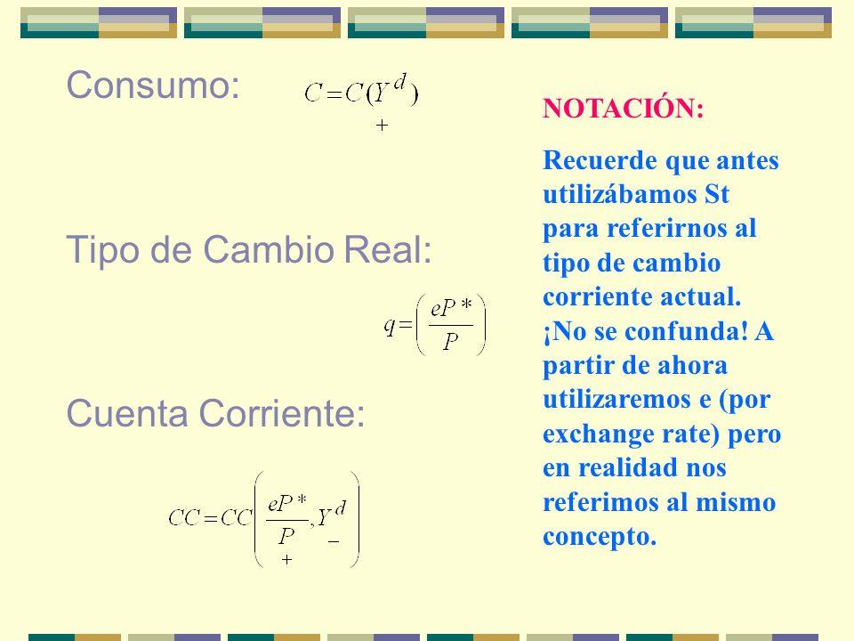 Consumo: Tipo de Cambio Real: Cuenta Corriente: NOTACIÓN: Recuerde que antes utilizábamos St para referirnos al tipo de cambio corriente actual. ¡No s