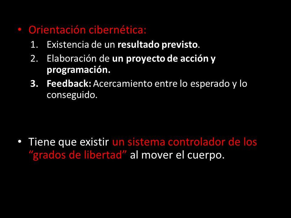 Orientación cibernética: Orientación cibernética: 1.Existencia de un resultado previsto. 2.Elaboración de un proyecto de acción y programación. 3.Feed