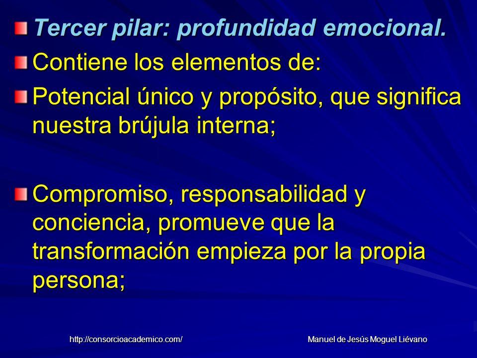 Tercer pilar: profundidad emocional. Contiene los elementos de: Potencial único y propósito, que significa nuestra brújula interna; Compromiso, respon