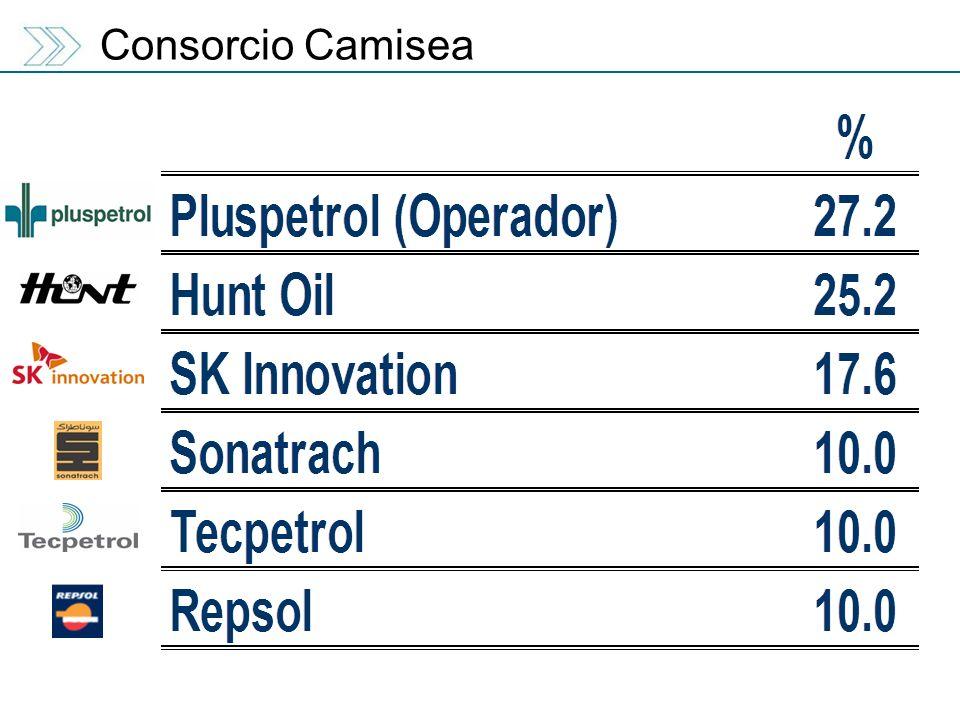 Consorcio Camisea