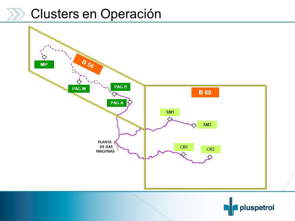 B 88 SM3 SM1 CR3 CR1 PAG B PAG A B 56 PAG W MIP Clusters en Operación
