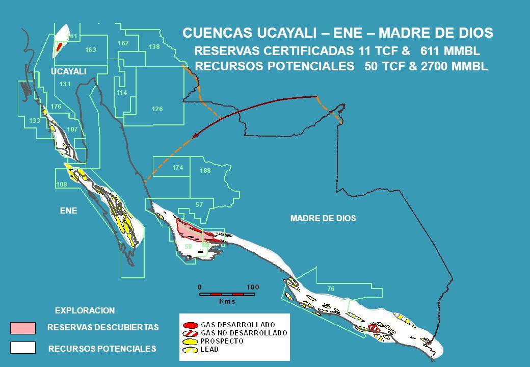 PETROBRAS ENERGÍA PERÚ JULIO 2012 CADENA DE VALOR DE LA INVERSION RECURSOS DESCUBRIMIENTOS POR EXPLORACION ACCESO A RECURSOS DESCUBIERTOS DESCUBRIMIENTOS POR EXPLOTACION PROSPECTOS INVERSION EN INFORMACION PRODUCCION RESERVAS PROBADAS INVERSION EN INFRAESTRUCTURA