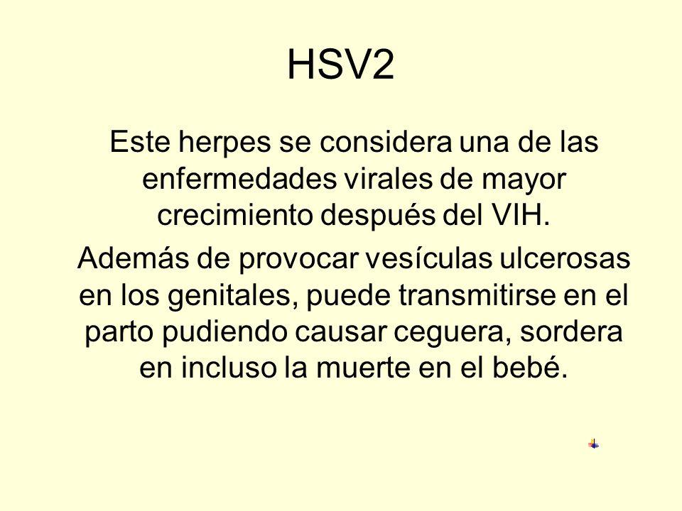 HPV El virus causa verrugas genitales que, se cree, son responsables de cáncer de cuello de útero, vagina y pene. Quienes sean portadores de este viru