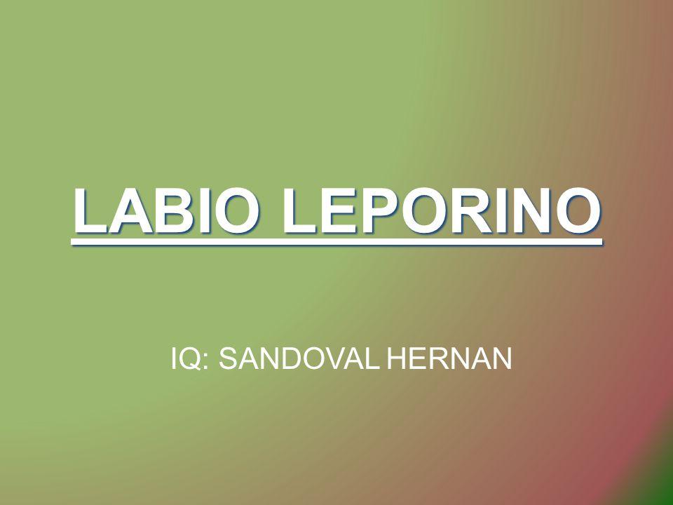LABIO LEPORINO IQ: SANDOVAL HERNAN