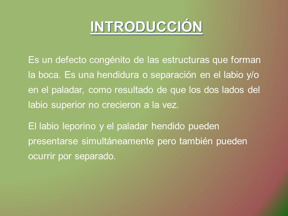 INTRODUCCIÓN INTRODUCCIÓN Es un defecto congénito de las estructuras que forman la boca. Es una hendidura o separación en el labio y/o en el paladar,