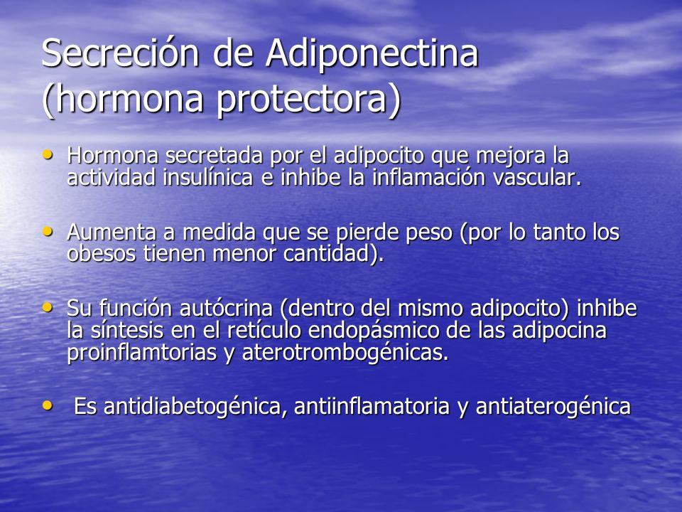 Secreción de Adiponectina (hormona protectora) Hormona secretada por el adipocito que mejora la actividad insulínica e inhibe la inflamación vascular.
