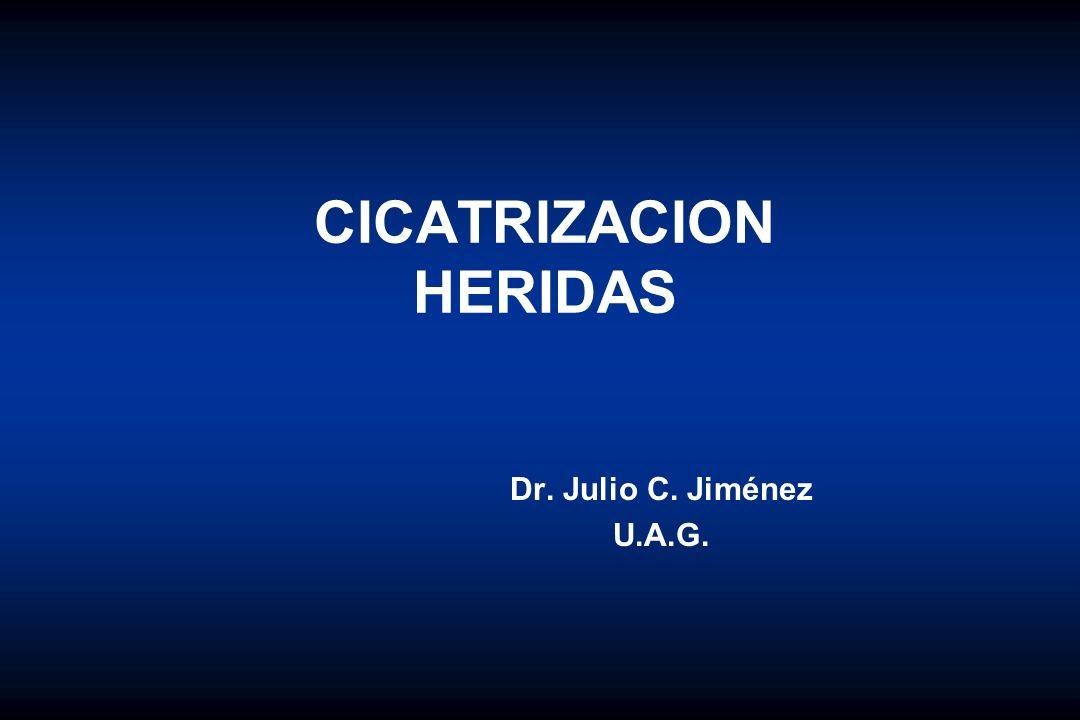CICATRIZACION HERIDAS Dr. Julio C. Jiménez U.A.G.