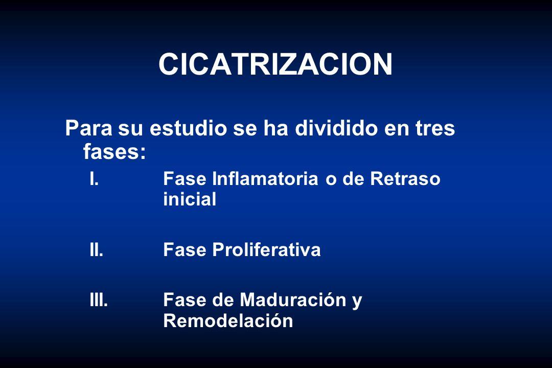 HERIDAS Clasificación según la contaminación de las heridas II.