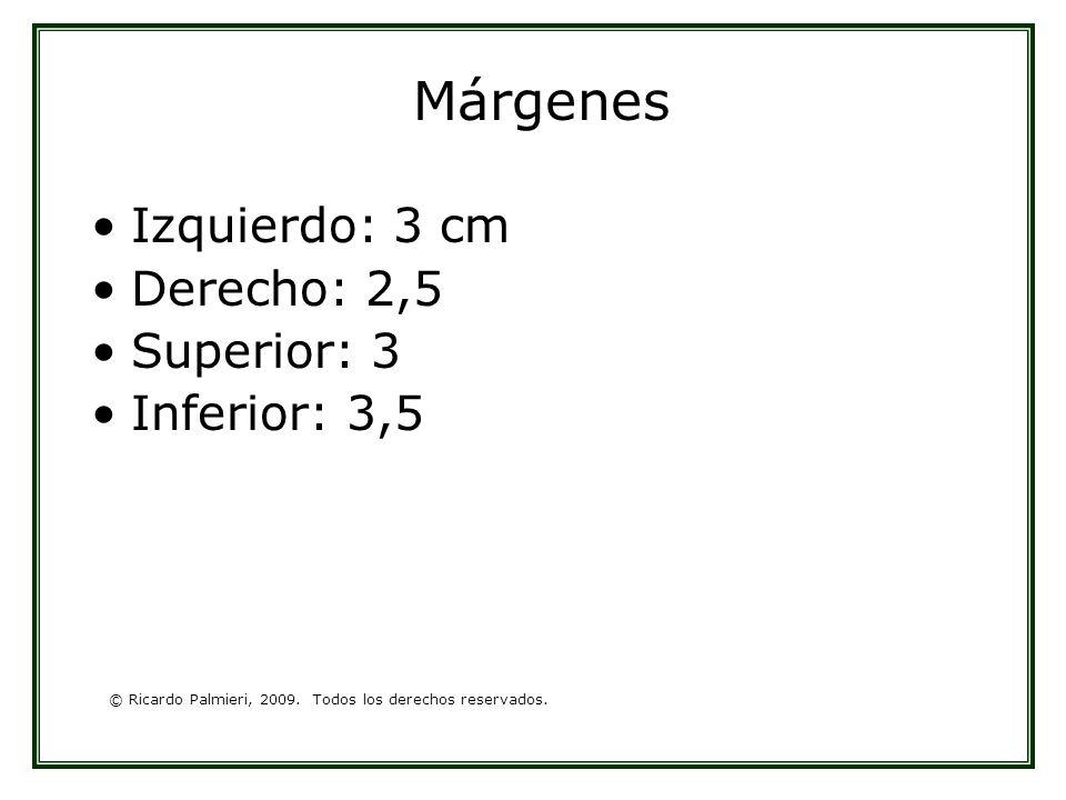 © Ricardo Palmieri, 2009. Todos los derechos reservados. Márgenes Izquierdo: 3 cm Derecho: 2,5 Superior: 3 Inferior: 3,5