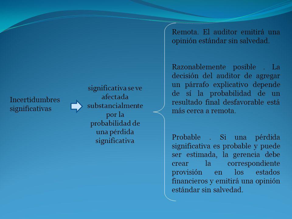Incertidumbres significativas significativa se ve afectada substancialmente por la probabilidad de una pérdida significativa Remota. El auditor emitir