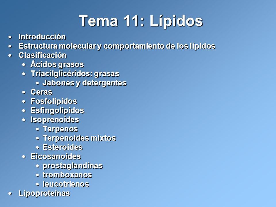 Tema 11: Lípidos Introducción Introducción Estructura molecular y comportamiento de los lípidos Estructura molecular y comportamiento de los lípidos C