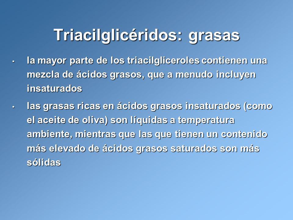 la mayor parte de los triacilgliceroles contienen una mezcla de ácidos grasos, que a menudo incluyen insaturados la mayor parte de los triacilglicerol