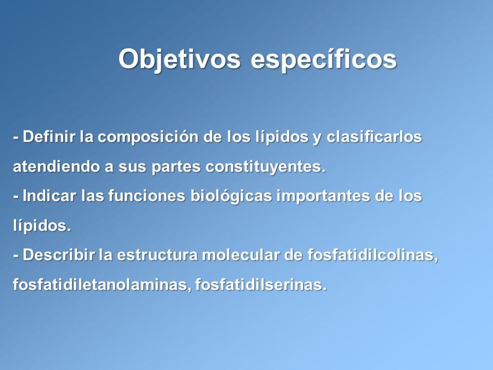 Objetivos específicos - Definir la composición de los lípidos y clasificarlos atendiendo a sus partes constituyentes. - Indicar las funciones biológic