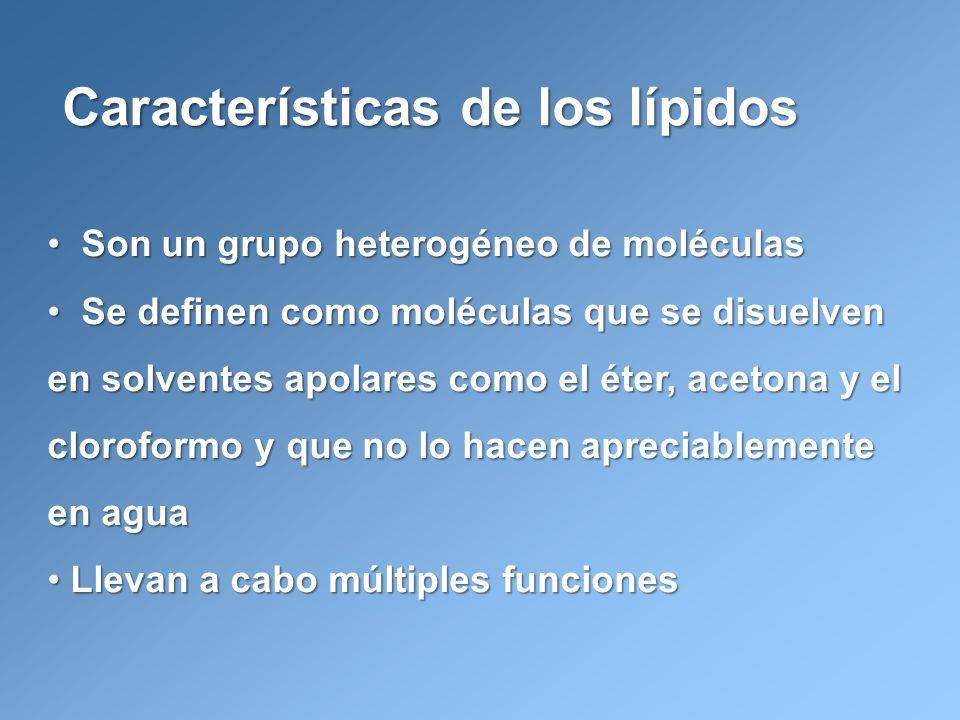 Estructura de una lipoproteína Lehninger, A.L., Nelson, D.L. y Cox, M.M. Principios de Bioquímica.
