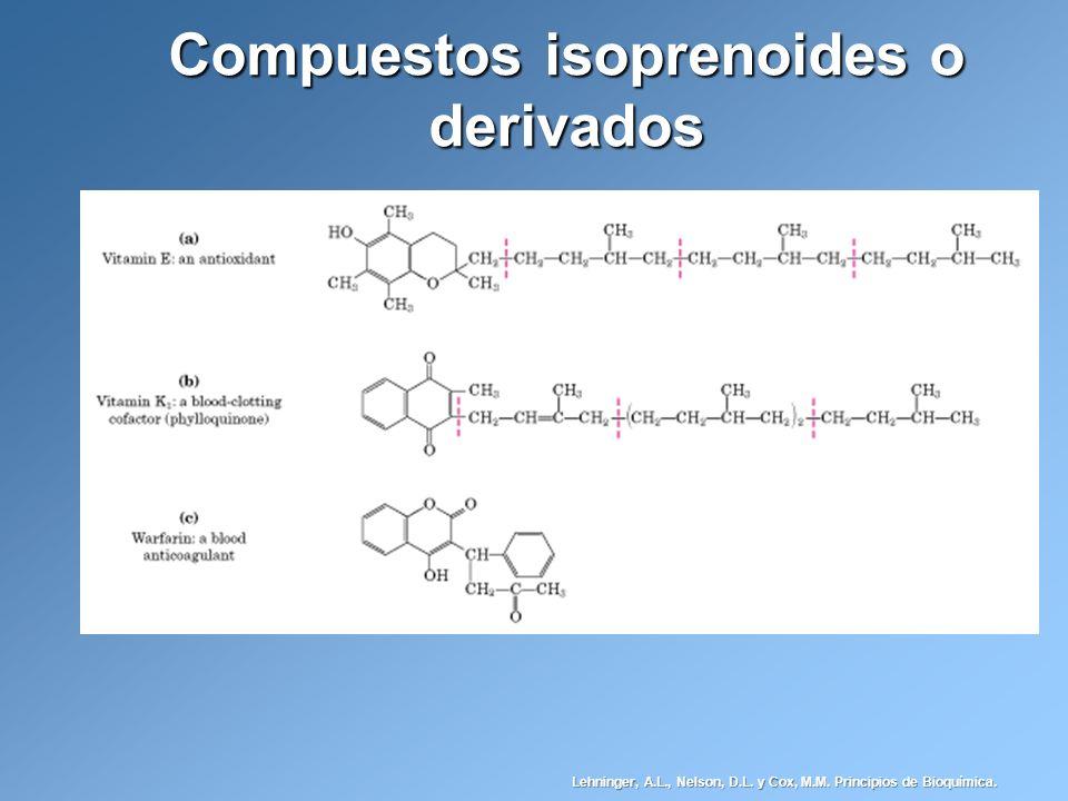 Compuestos isoprenoides o derivados Lehninger, A.L., Nelson, D.L. y Cox, M.M. Principios de Bioquímica.