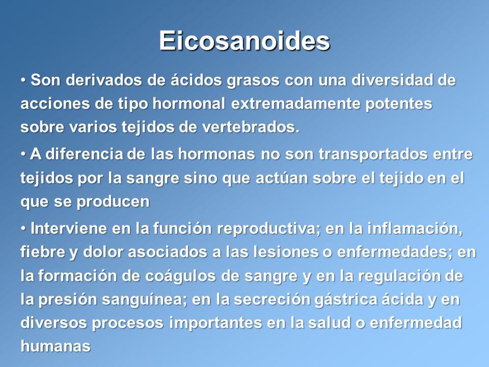 Son derivados de ácidos grasos con una diversidad de acciones de tipo hormonal extremadamente potentes sobre varios tejidos de vertebrados. Son deriva