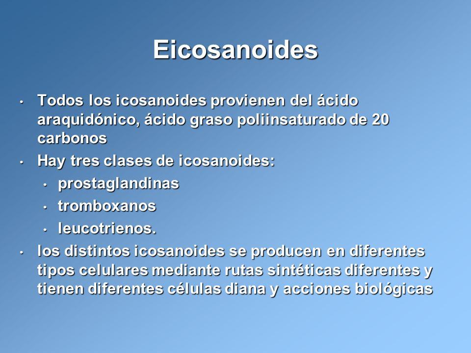 Todos los icosanoides provienen del ácido araquidónico, ácido graso poliinsaturado de 20 carbonos Todos los icosanoides provienen del ácido araquidóni
