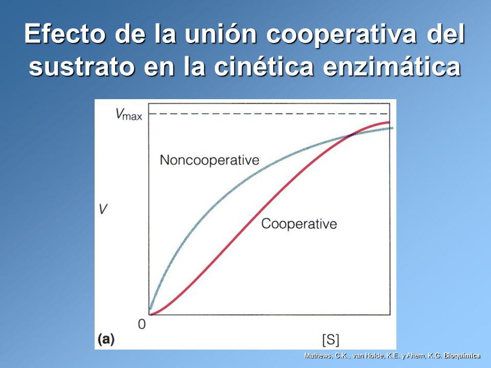 Efecto de la unión cooperativa del sustrato en la cinética enzimática Mathews, C.K., van Holde, K.E. y Ahern, K.G. Bioquímica